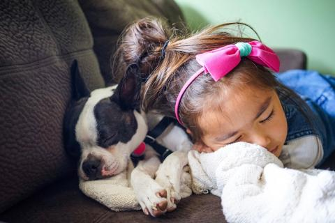 A young girl takes a nap with her dog.