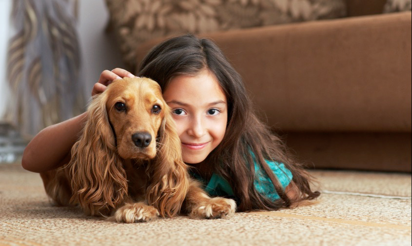 Learn about how pets can help kids get through tough emotional situations.